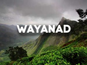 Wayanad Trip
