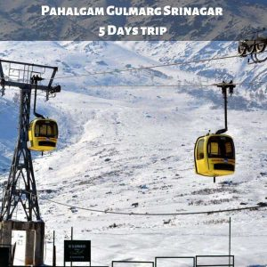 Pahalgam Gulmarg Srinagar 5 Days trip