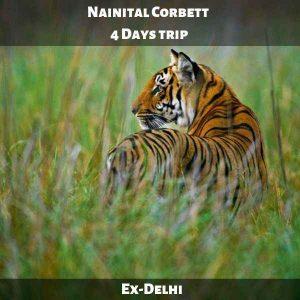 Nainital Corbett