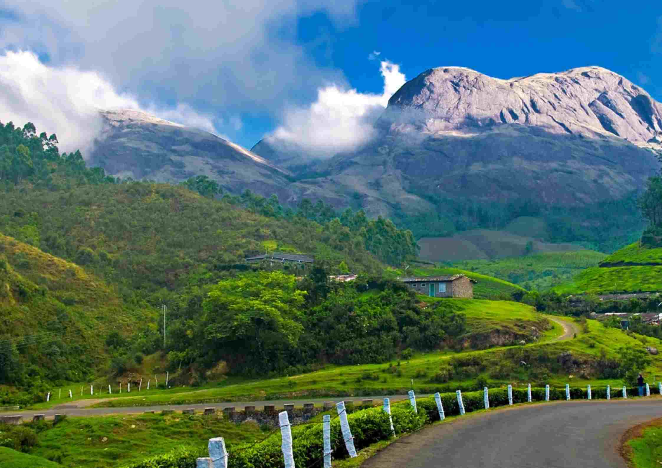 hills in Munnar